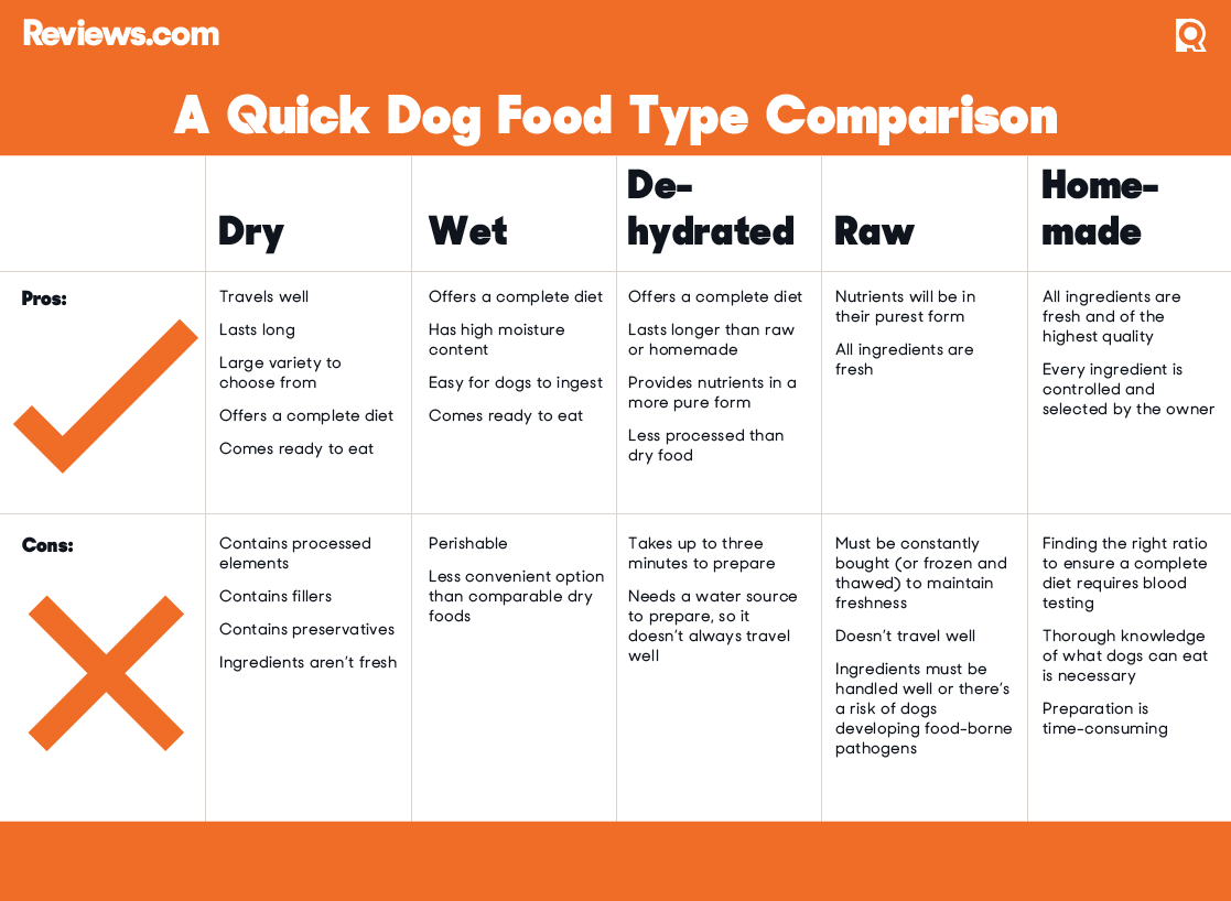 List Of Best Canned Dog Food